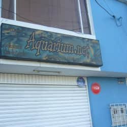Aquarium.Net en Bogotá