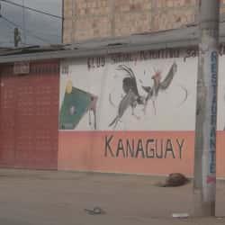 Kanaguay en Bogotá