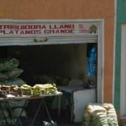 Distribuidora Llano en Bogotá