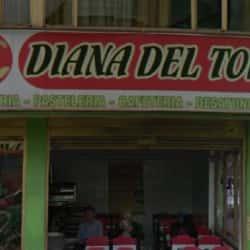Diana del Tolima en Bogotá