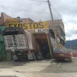 Exostos y Silenciadores Elvis en Bogotá