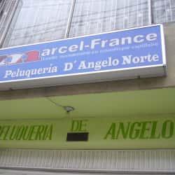 Peluquería D'Angelo Norte en Bogotá
