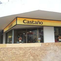 Castaño - Av. Nueva Providencia / Gral. del Canto en Santiago