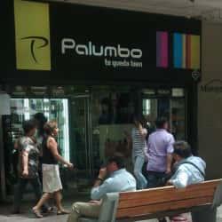 Palumbo - Vivo Panorámico en Santiago