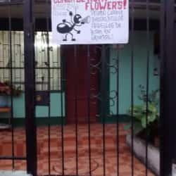Clínica de Ropa Flowers en Santiago