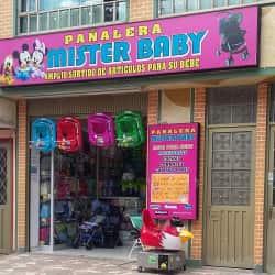 Pañalera Mister Baby en Bogotá