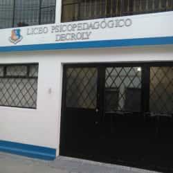 Liceo Psicopedagógico Decroly en Bogotá