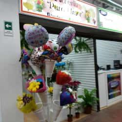 Floreria Puro Amor en Santiago