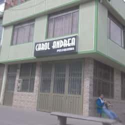 Carol Andrea Peluqueria en Bogotá
