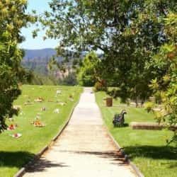 Parque Cementerio de Quilicura en Santiago