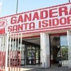 Ganadera Santa Isidora - Los Toros en Santiago