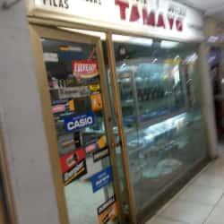 Reloria Tamayo en Santiago