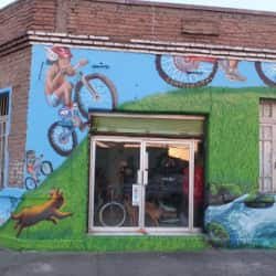Taller de Bicicletas Azimut  en Santiago