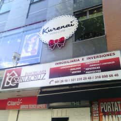 Inmobiliaria Santacruz en Bogotá
