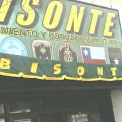 Armería Bisonte en Santiago