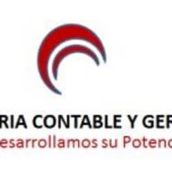 Asesoria Contable Gerencial, NIIF y Tributaria en Bogotá