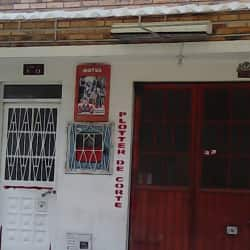 Ploter de Corte en Bogotá