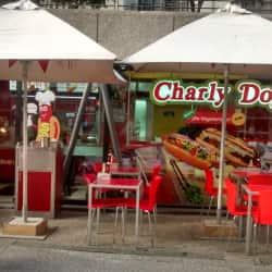Charly Dog en Santiago