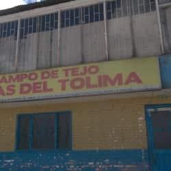 Campo De Tejo Brisas Del Tolima en Bogotá