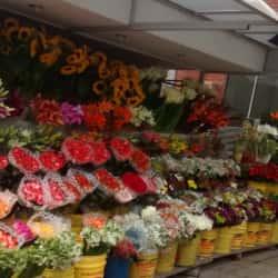Beautiful Flowers en Bogotá