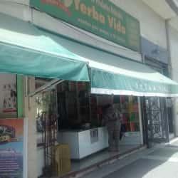 Yerba Vida en Santiago