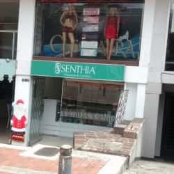 Sex Shop Avenida Carrera 15 en Bogotá