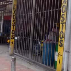 Exostos L en Bogotá