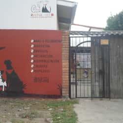 Dikfuk vet en Bogotá