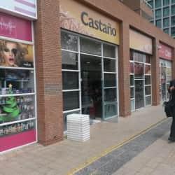 Castaño - Evaristo Lillo en Santiago