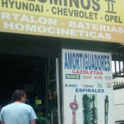 Amortiguadores Palominos II en Santiago