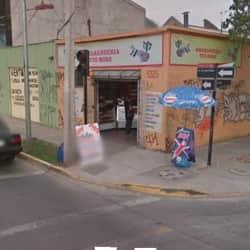 Amansanderia tito monte en Santiago