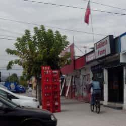 Botillería Fanny - Puente Alto en Santiago