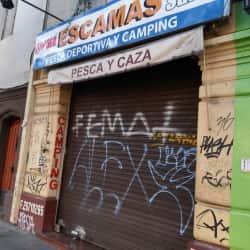 Escamas en Santiago