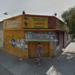 Comida para Mascotas Luciano en Santiago