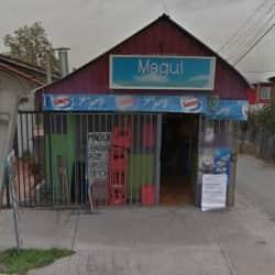 Bazar Magui - 5 de Abril / Sol Naciente en Santiago
