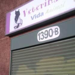 Veterianaria Vida Animal en Santiago