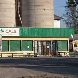Cals - Talagante en Santiago