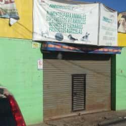 Alimentos para Mascotas Dagrovet - Melipilla en Santiago