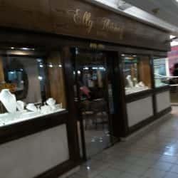 Elly Ibañez - Centro Comercial Apumanque en Santiago