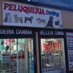 Mundo Pets en Bogotá