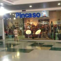 Pincaso en Bogotá