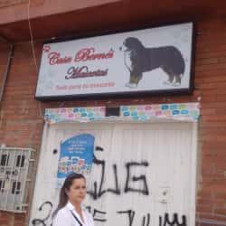 Casa Bernes Mascotas  en Bogotá