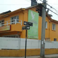 Instituto Manquehue en Santiago