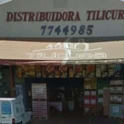 Distribuidora Tilicura en Santiago