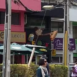 Monkey Dog en Santiago