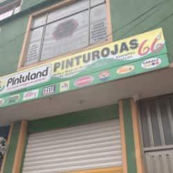 Pinturojas 66  en Bogotá