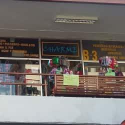 Charme - Los Cobres de Vitacura en Santiago