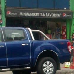 Minimarket La Favorita en Santiago
