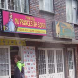 Pañalera Mi Princesita Sofia en Bogotá