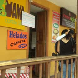 La iguana Tenjo en Bogotá
